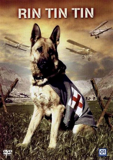Jaquette/Covers Rintintin (Finding Rin Tin Tin)